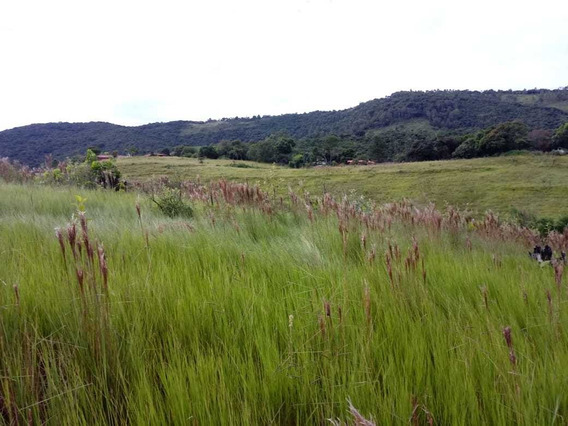 (k.a) Venha Conferir Otimos Terrenos Em Sp Lote Particular