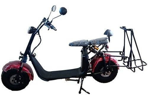 Moto Scooter Eléctric Carro Golf Pie Doble Bluetooth Alarma