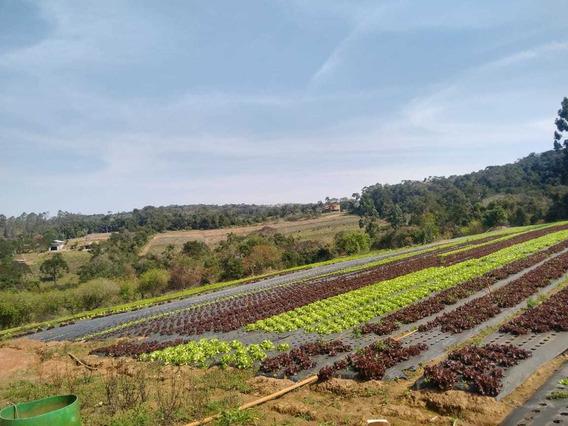 E.p Terrenos Em Ibiuna 1000 M2 Sem Burocracia Plantao Hoje