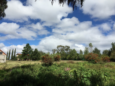 Terreno Arbolado Para Inversión Cerca De Tepotzotlán