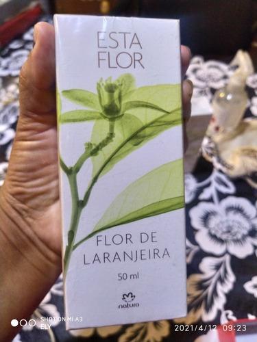 Sta Flor De Larangeira De Natura..