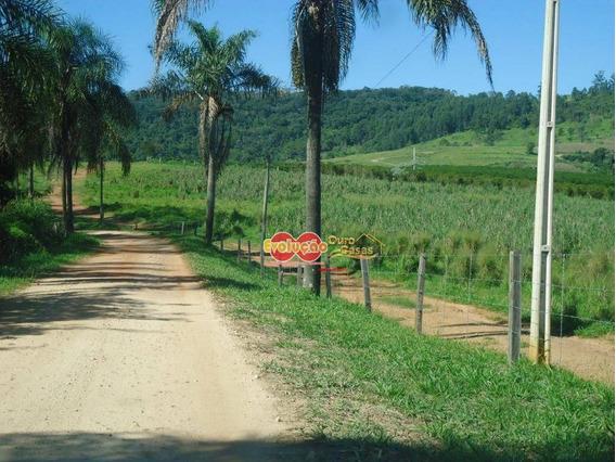 Fazenda - Município Amparo-sp/ Pedreira-sp - Fa0028
