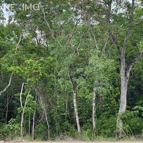 Imagen 1 de 5 de Terreno En Venta En La Región 15 De Tulum, Quintana Roo
