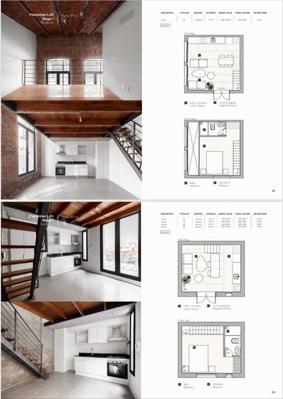 Lofts,se Venden Con Renta. Opción Por Unidad O Edificio.