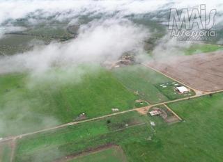 Fazenda Para Venda Em São Valério Da Natividade, 8 Dormitórios, 4 Banheiros - Cvfaz2020_2-1004728