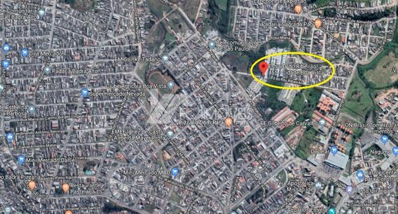 Estrada Do Ribeirao, Cidade Boa Vista, Suzano - 174534