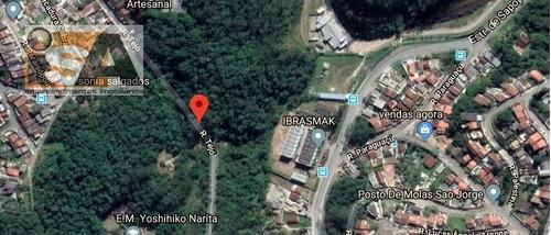 Área Em Pilar Velho - Ribeirão Pires, Sp - 3153