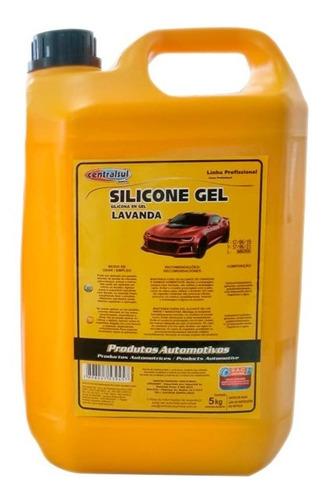 Imagen 1 de 1 de Silicona Gel Para Auto X 5kg Centralsul