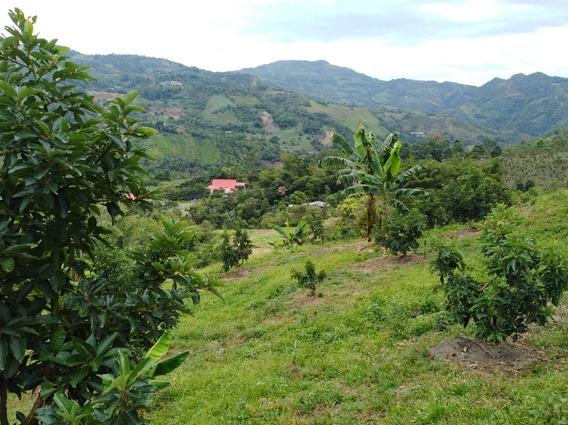 Excelente Lote En La Vega Cundinamarca