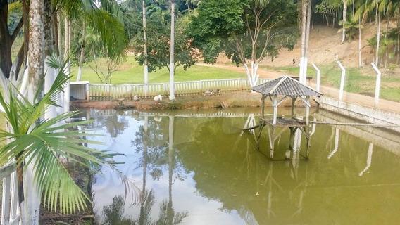 Lindo Sítio Em Luiz Alves Com 65.963 M². - 3578699