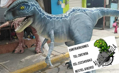 Show De Dinosaurios Dinosaurios Reales Botargas Dinosaurios