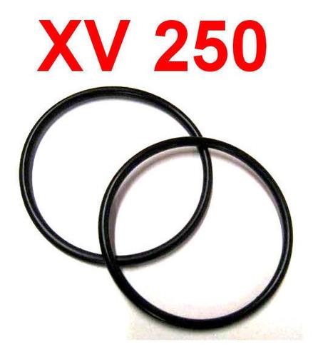 Retentores Anéis Vedação Coletor Admissão Virago Xv 250