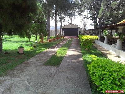 Haciendas - Granja Para Pollos En Tinaquillo