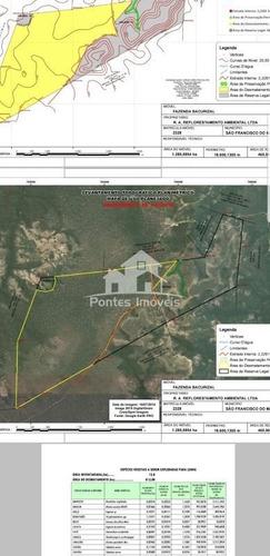 Fazenda Produtiva Hectares 1.289,5854 Para Venda No Bairro Bacurizal Em São Francisco Do Maranhão - Ma - Faz11