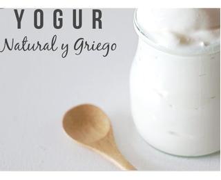 Kefir Cultivo-madre Para Yogur Griego Reutilizable 100%natur
