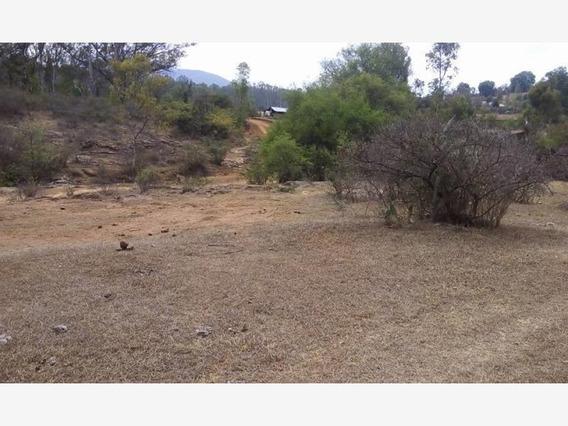 Terreno En Venta La Sanguijuela (santiago Undameo)