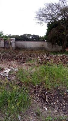 Terreno Limpo Em Guaratuba - 64612