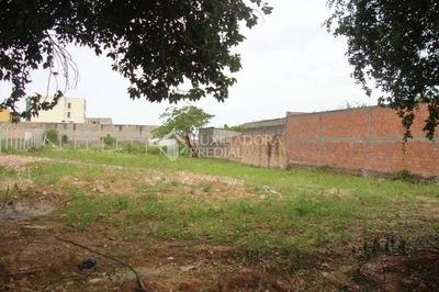 Terreno - Sao Luiz - Ref: 228502 - L-228502