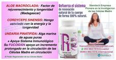 Celulas Madre Ya En Ecuador Asesoramiento Y Ventas