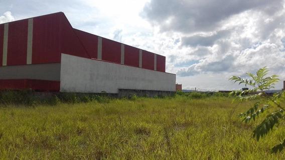 Terreno Para Alugar, 2100 M² Por R$ 5.000,00/mês - Vila Alzira - Guarulhos/sp - Cód. Te0489 - Te0489