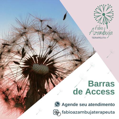 Atendimento Com Barras De Access