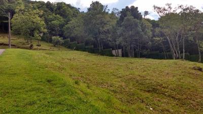 Terreno Residencial À Venda, Condomínio Aspen Mountain, Gramado - Te0052. - Te0052