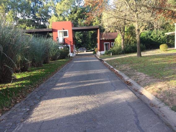 Terreno - Villa Rosa