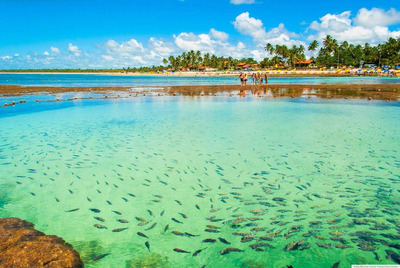 Paquetes Turisticos A Brasil 2020 All Inclusive En Cuotas