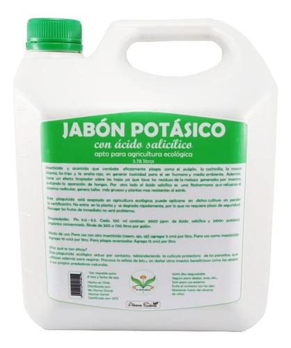 Jabon Potasico Liquido Galon