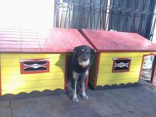 Pensionado Canino El Chelito
