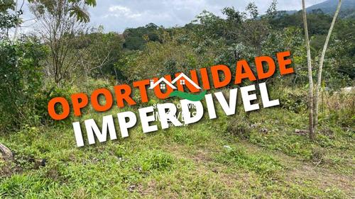Imagem 1 de 4 de Chácara, Area Rural, Pedro De Toledo - R$ 50 Mil, Cod: 570 - V570