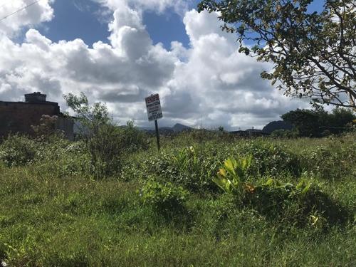 Terreno Em Mongaguá - 6384 - 69415627