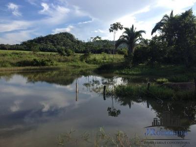 Fazenda Em Novo Brasil Com 78 Alqueires - 362