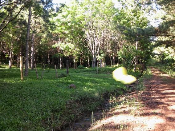 Vendo Hermosa Chacra -guarani- Gsa