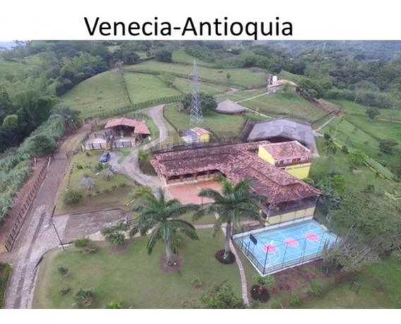Venta Finca Ganadera En Venecia Antioquia