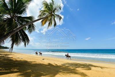 Coalición Vende Terreno 25,150 Mts2 Con Playa En Samaná-