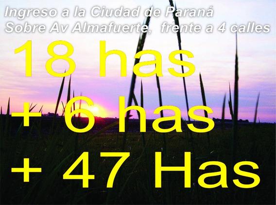 Sobre Ingreso A Paraná Fracción De 24 Hectáreas