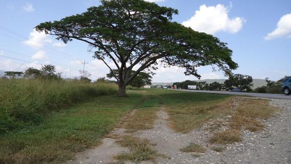 Se Vende Terreno Municipio Peña Rah: 19-56