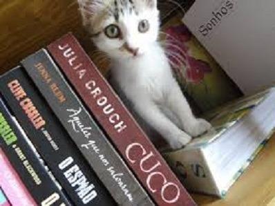 20 Livros Usados De Literatura Estrangeira