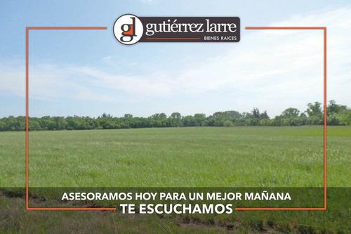 Campo 235 Ha, Rincón Del Pino, Precio Conveniente!