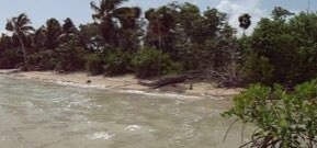 Terreno En Venta En Quintana Roo