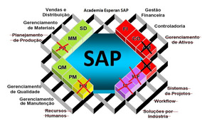 Sap Erp Módulos(sd,mm,fi,pm,qm,basis,acad. Abap) - Produto 1