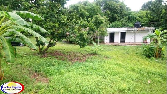 Finca Pequeña En Venta En Republica Dominicana