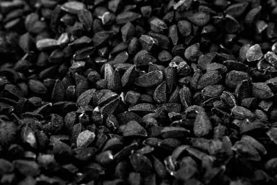 Comino Negro Nigella Sativa Egipto Egipto 500 Gr