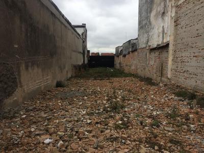 Terreno Em Alto Da Mooca, São Paulo/sp De 0m² À Venda Por R$ 1.100.000,00 - Te236450