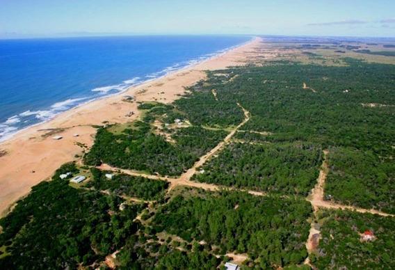 Terreno Venta En Pesos Uruguay Oceanía Del Polonio