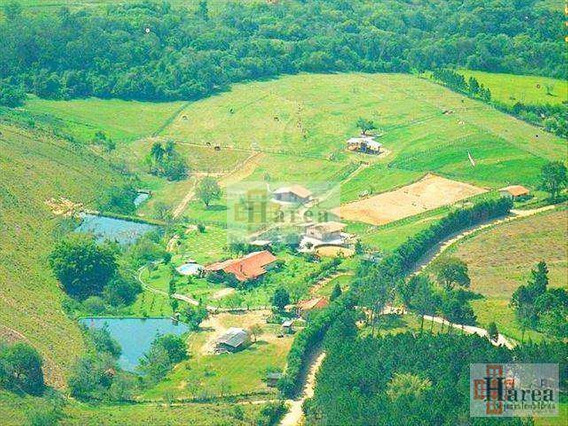 Haras Com 3 Dorms, Campininha, Araçoiaba Da Serra - R$ 3 Mi, Cod: 8056 - V8056