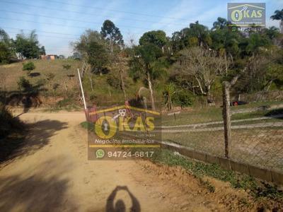 Chácara Com 4 Dormitórios À Venda, 5500 M² Por R$ 350.000 - Chácara Nossa Senhora Aparecida Ii - Suzano/sp - Ch0037