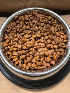 Cachorro Raza Pequeña 20kg Granel +obsequio Leer Descripción