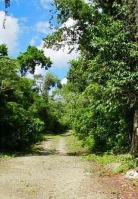 Terreno En Venta En Ruta De Los Cenotes En Quintana Roo